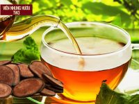nhung hươu và cách sử dụng hãm trà