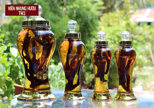 Nhung hươu ngâm rượu giúp tăng cường sức khỏe cho phái mạnh