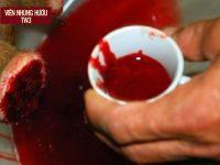 Huyết nhung được lấy trong quá trình khai thác nhung hươu