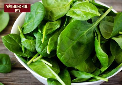 Siêu thực phẩm bồi bổ cơ thể rau chân vịt