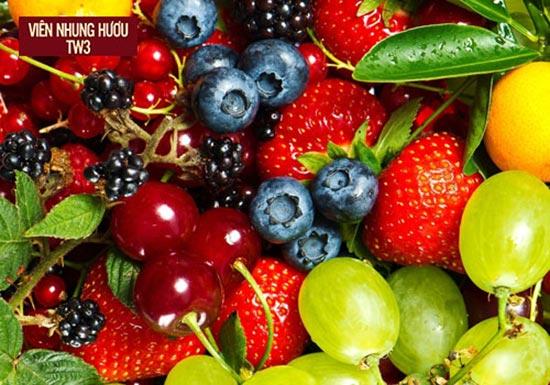 Trái cây thực phẩm không thể thiếu trong thực đơn giúp tăng cường sức khỏe