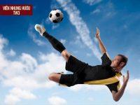 10 thực phẩm chức năng cho người chơi thể thao TỐT NHẤT