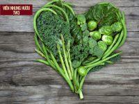 Thực phẩm tăng sức đề kháng cho cả GIA ĐÌNH cùng khỏe