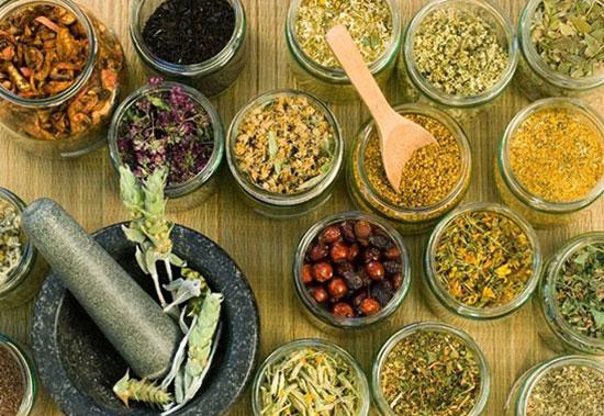 Bài thuốc bổ trung ích khí giúp người mới ốm dậy nhanh chóng hồi phục