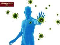 Tăng cường sức đề kháng tự nhiên là cách tốt nhất để phòng ngừa nguy cơ nhiễm bệnh