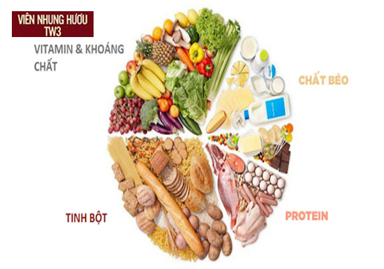 Đảm bảo 4 nhóm dinh dưỡng thiết yếu trong chế độ ăn giúp tăng sức đề kháng cho người lớn